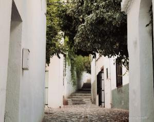 Callejuelas del Albaicín y sus carmenes